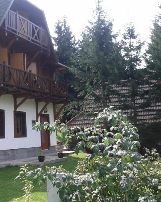 Apartments Vila Zubović