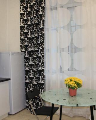 Apartment Ostrovskogo 88
