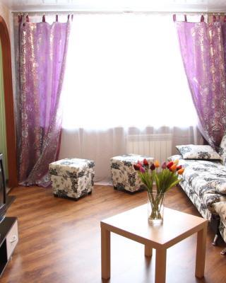 Apartment on Nevskogo Street 18
