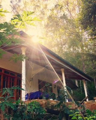 Secret Nest Homestay