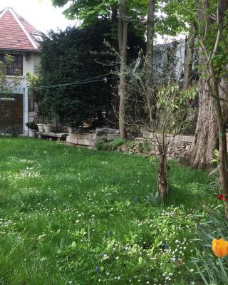 Petite maison du jardin