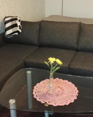 Niskalankatu Apartment