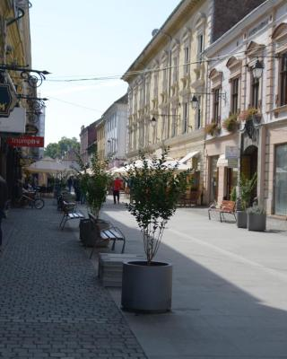 Attic Apartment - Unirii Square