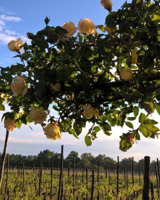 Cascina La Maddalena Bed & Wine