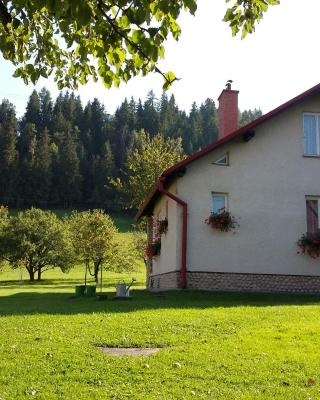 Double Cottage Osturna