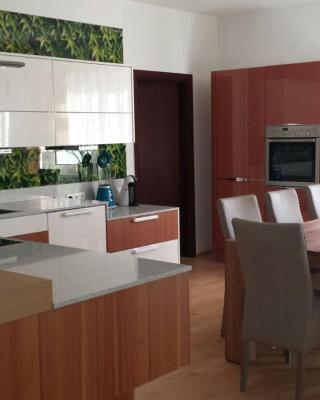Modernes 3-Zimmer-Apartement nahe Graz