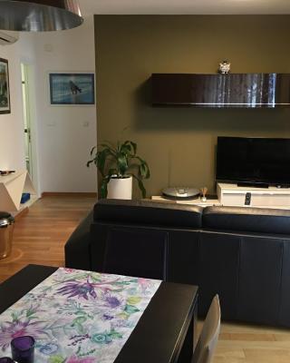 Apartment Superum