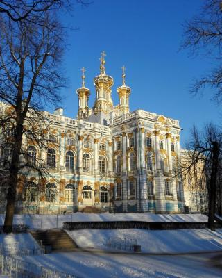 Apartment Near the Catherine Palace