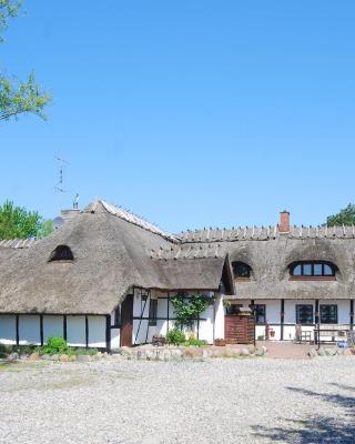Den gamle Digegaard