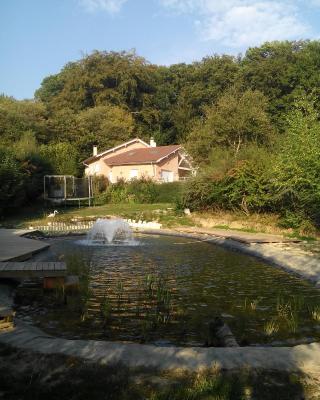 Le Jardin Ombragé