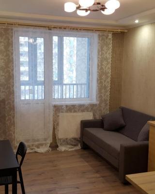 Apartment on Molodezhnaya 78