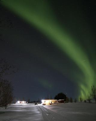 Höfði Cottages