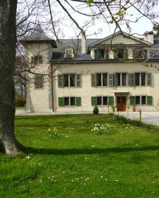 Château de Veigy