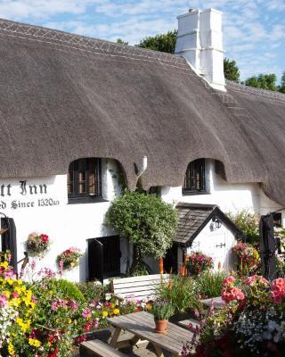 The Cott Inn
