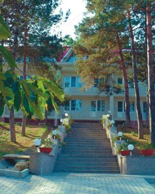 Inn Beryozka