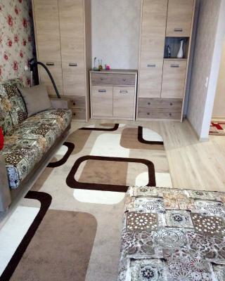 Apartments on Dzerzhinskogo 7