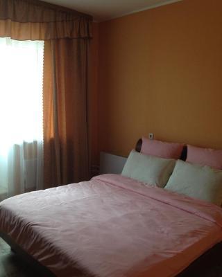 Apartment on Professionalnaya 22