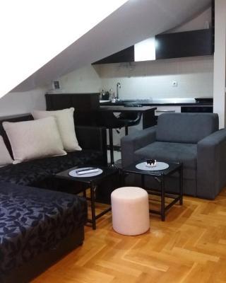 Studio Apartment Radosavljević