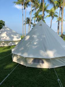 Glamping Kaki - Large Bell Tent