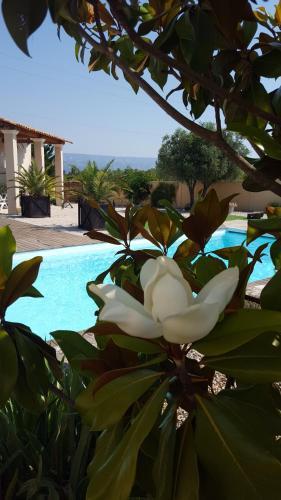 Lamanderie En Provence