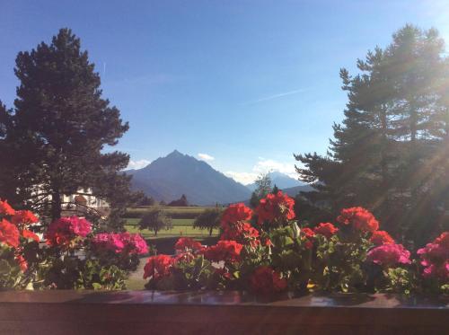 Haus Angelika - bed & breakfast - Innsbruck/Igls