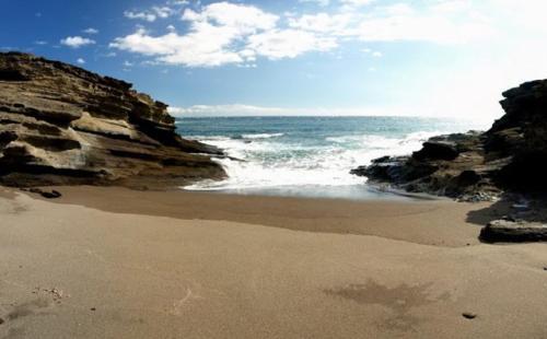 Estudio Ocean
