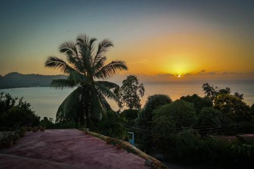 Horizon view