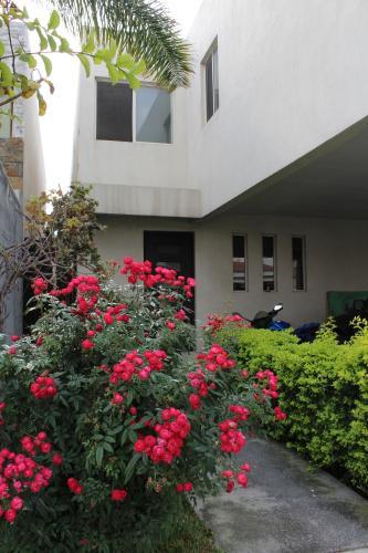 Apartamento en Santa Catarina