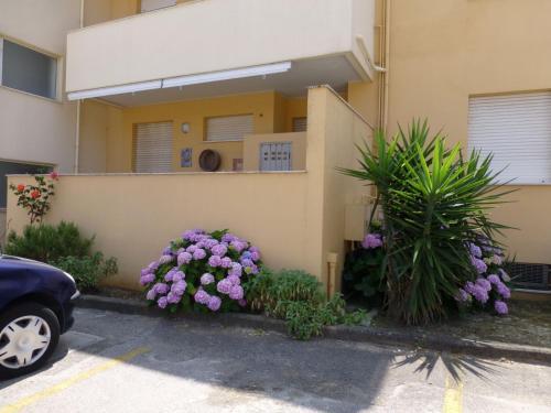Appartamento Del Mare