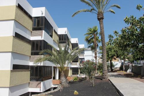 Apartamento Testeina San Agustin