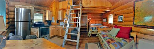 Orca Cabins on The Kenai River