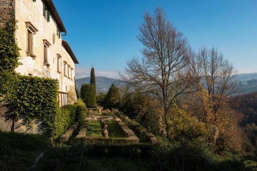 Florentine Villa among olive trees