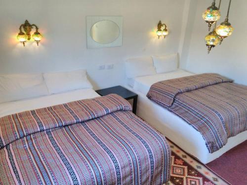 Petra Wonders Bedouin Bed and Breakfast