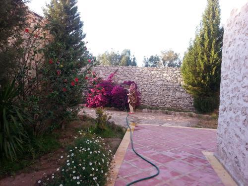 tilila house