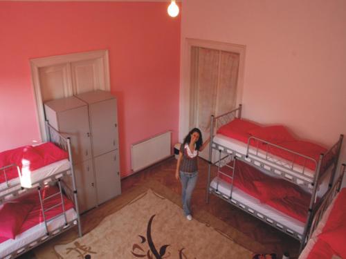 Casa Vesela Mihai