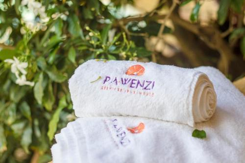 Pawenzi Serviced Apartments