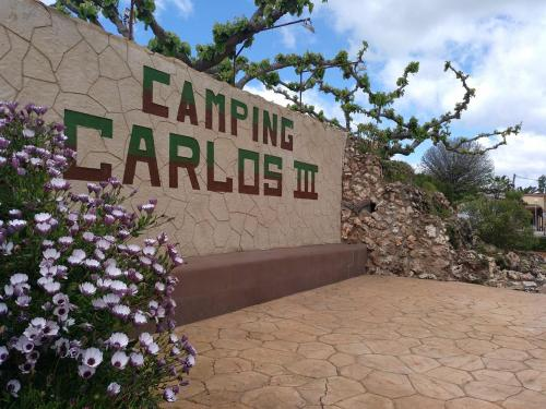 Description for a11y. Camping Carlos III