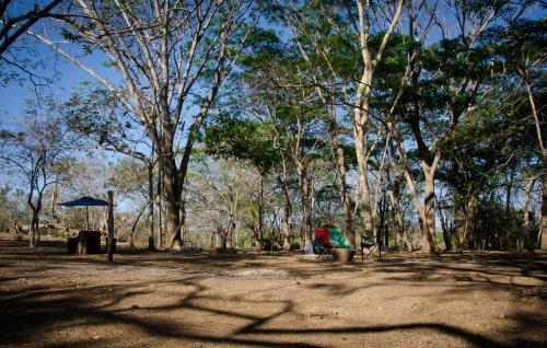 Camping Howler Monkey Farm