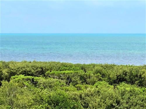 Ocean Vista at Oceanpointe