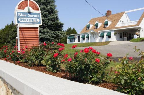 Blue Spruce Motel & Townhouses