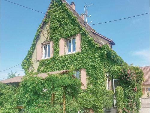 Four-Bedroom Holiday Home in Ebersheim
