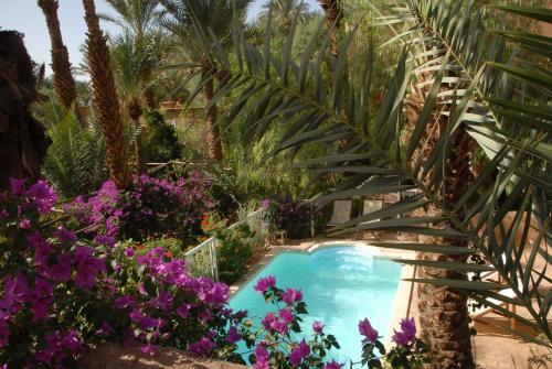 Villa Zagora Ma Villa au Sahara