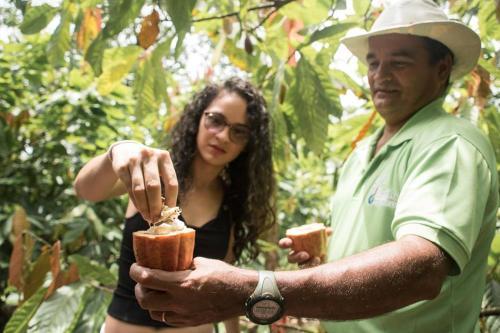 Organic Farm Paraiso
