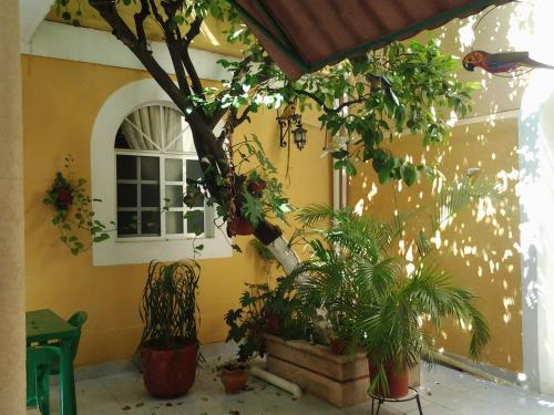 62 St. Guesthouse