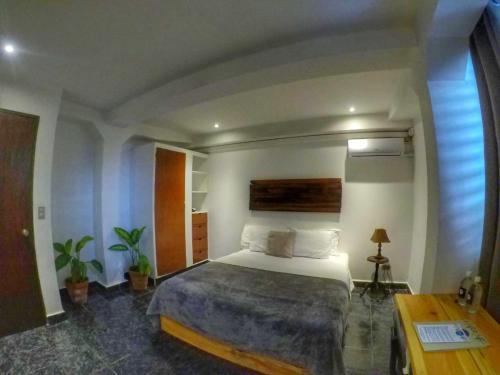 The 10 Best Accommodation in San Salvador, El Salvador ...