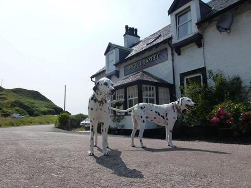 The 10 Best Kintyre Pet Friendly Hotels Hotels That Accept Pets In