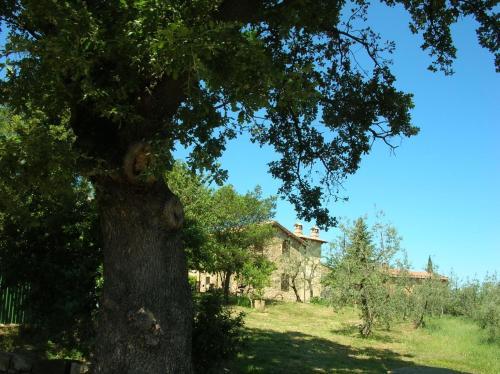 Casa Vacanze Porta Vecchia