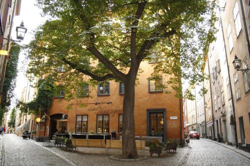 Castanea Old Town Hostel