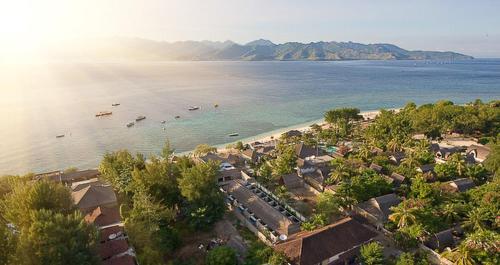 Scallywags Resort