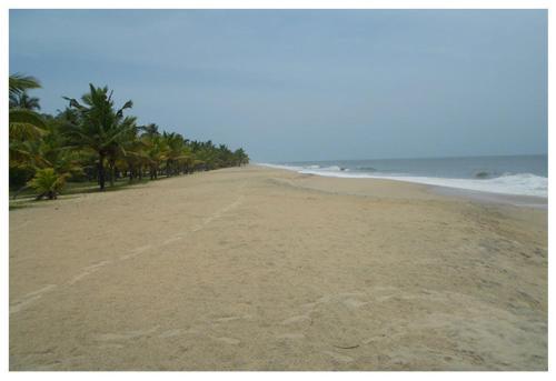 Marari Beach paradise